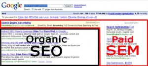 organic SEO versus paid SEM google search result page